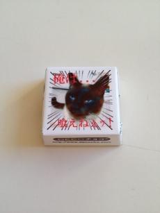猫にチョコは毒~