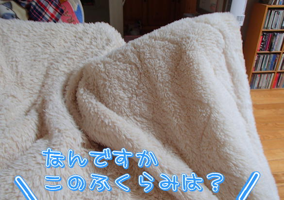 3_20140817155036cca.jpg