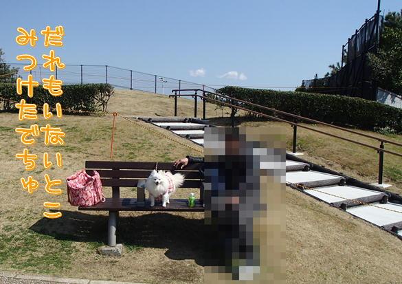 4_20140328085115771.jpg