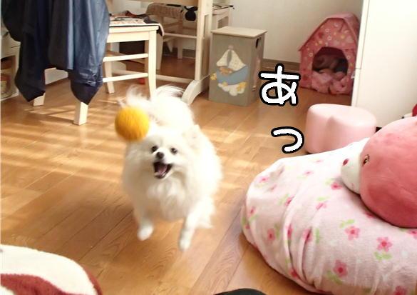 6_201402190801438cd.jpg