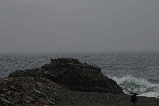 20140406-10.jpg