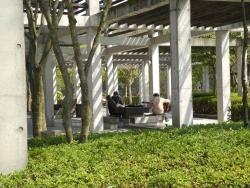 鏡山公園20130323