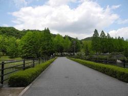 アコーディオンの練習~鏡山公園-1