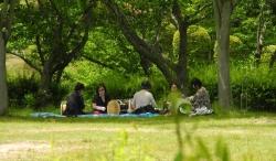 アコーディオンの練習~鏡山公園-2