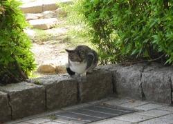 鏡山公園20140524-3