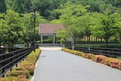 鏡山公園でアコーディオン20140529-1