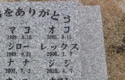 レジちゃん49日の広島ペット霊園20140214-6