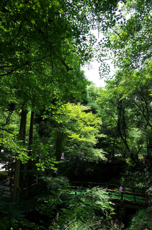 調音の滝公園