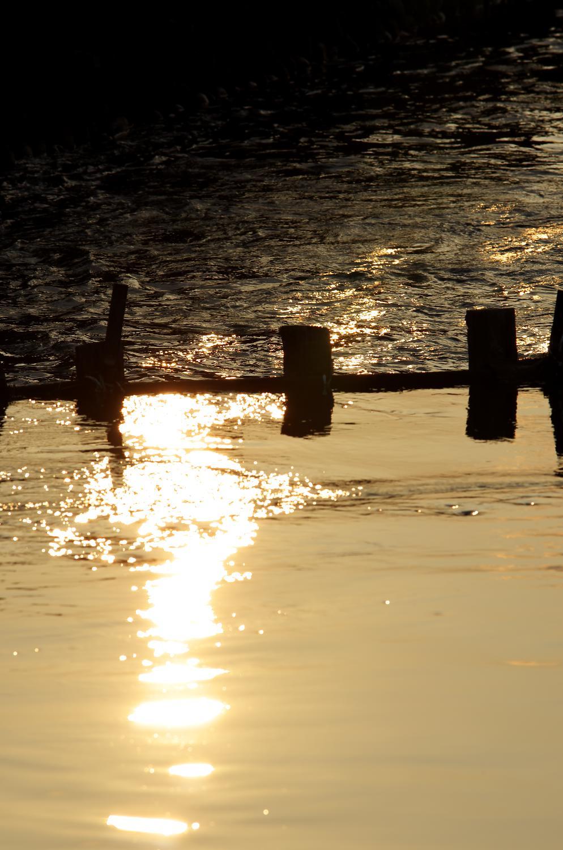 水路の夕陽_No.10