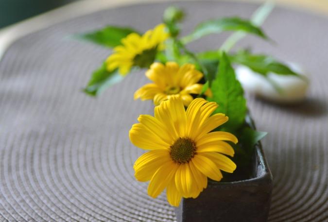 元黄色の花