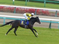 返し馬:イスラボニータ