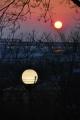 昭和山の街灯と夕日⑥