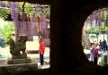 狛犬と灯籠と藤