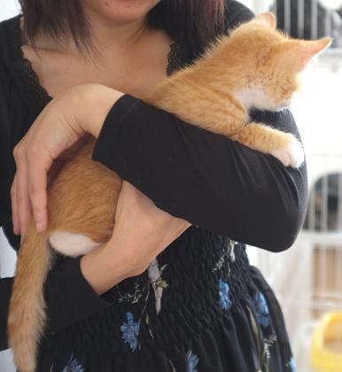 ついに抱っこ好きになりました