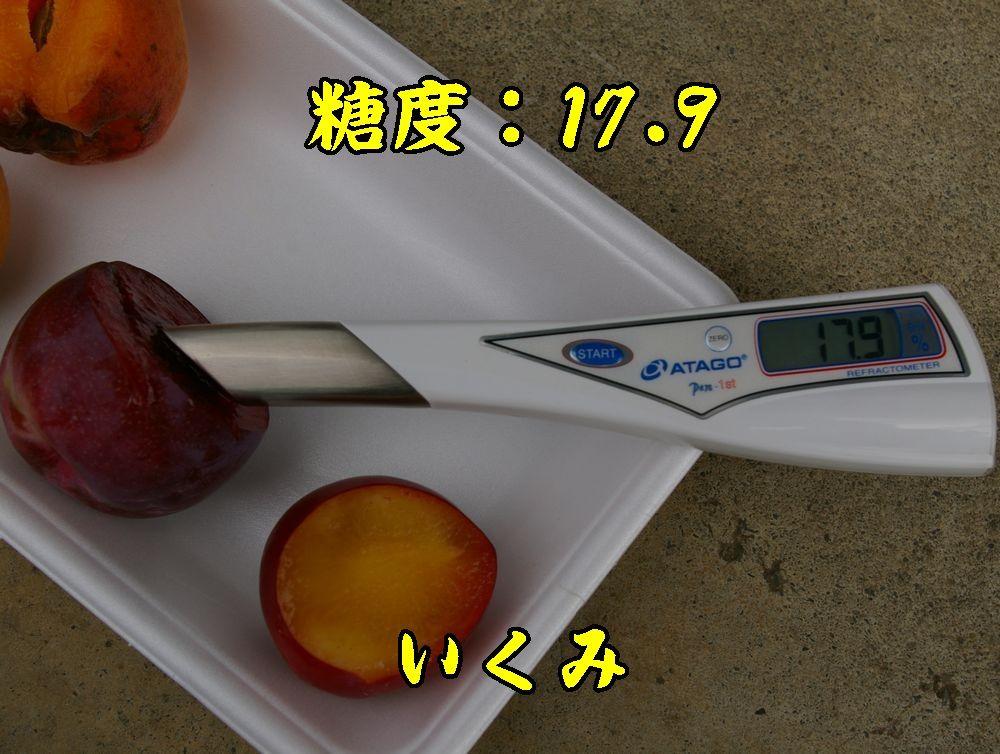 1ikumi0627c1.jpg