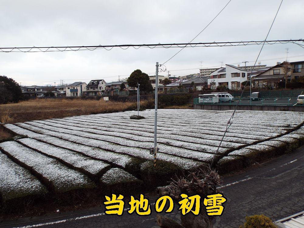 1yuki0307c1.jpg