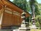 拝殿と古木スギ