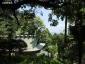 裏山から本殿と拝殿
