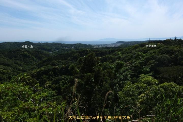 大平山展望1