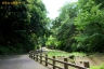 衣笠山公園1