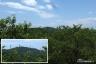 展望塔から大楠山