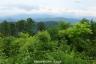 高尾山頂からの展望1