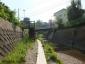 前田川遊歩道6