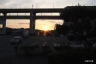 朝陽、与島PA