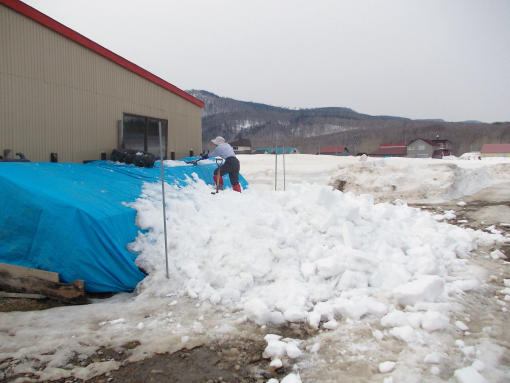 20140328_最後の除雪作業