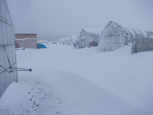 20140404_吹雪っぱなし