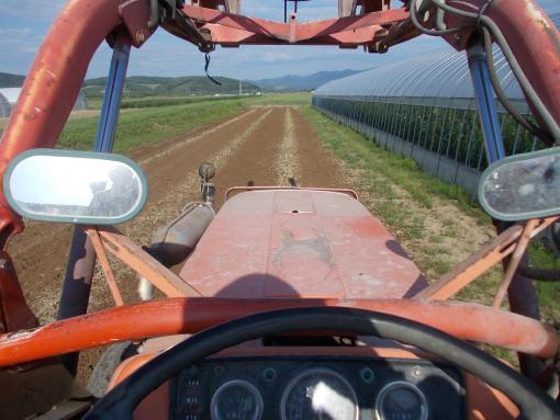 20140626_アスパラ畑肥料撒き
