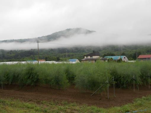 20140714_山に霧がかかる朝