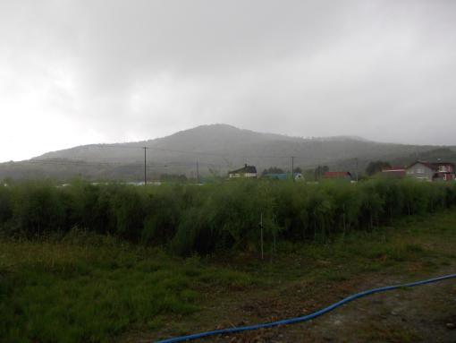 20140907_午後から雨