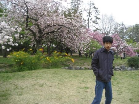 140419御所さんぽ⑫八重桜とふくた