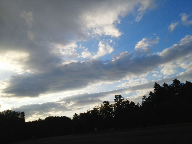 140826御所さんぽ・雨上がりの夕空