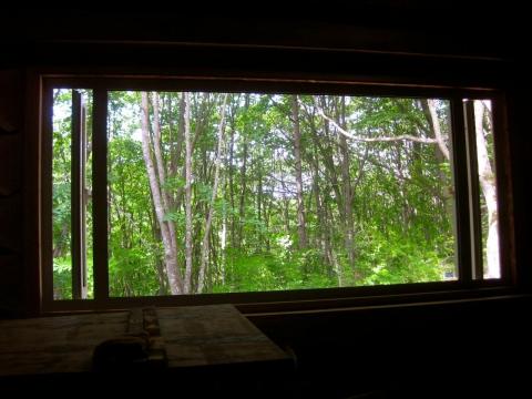 窓06281