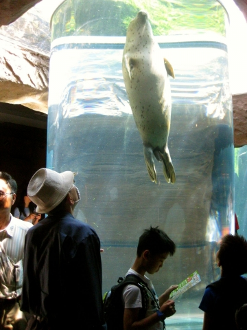 旭山動物園0715