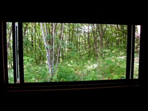 窓0729