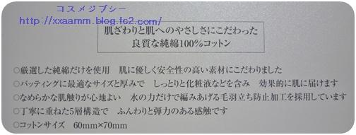 P1100259.jpg