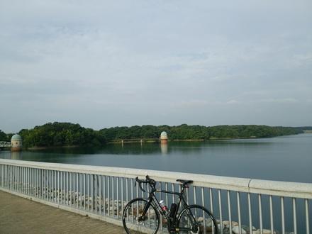 20140808_tamako.jpg