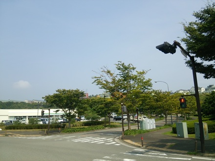 20140906_kokusai2.jpg