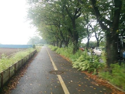 20140906_rain.jpg