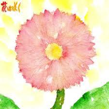 花は咲く011