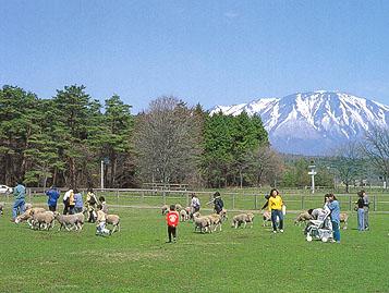 小岩井農場の休日