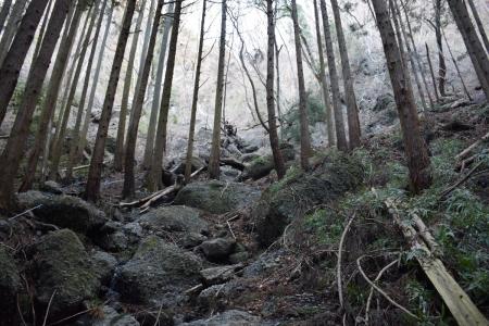 2-1登山道