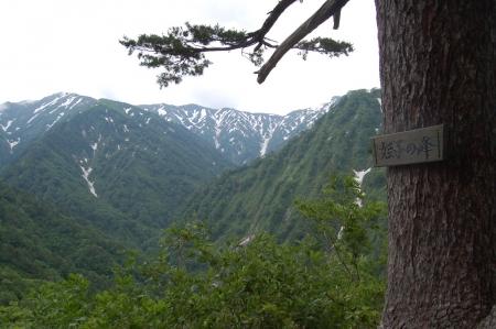 7姫子の峰