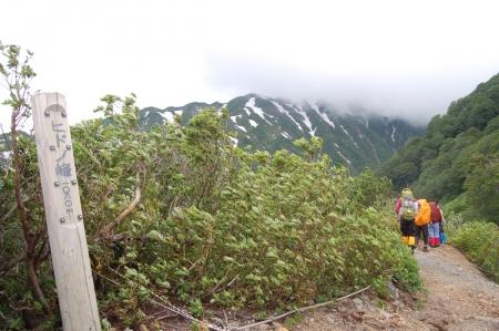 18ヒドノ峰