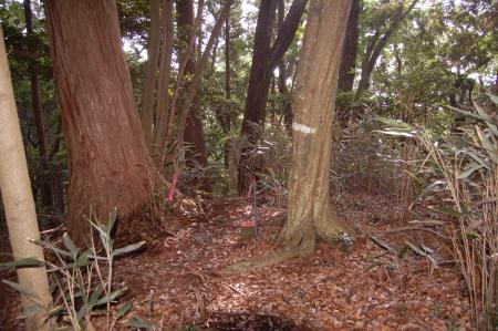 5鷲子山の山頂