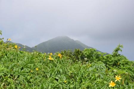12大倉山への尾根