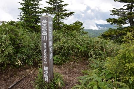11-1台倉高山